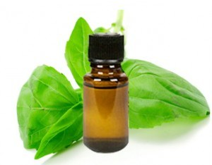 Pure Organic Aromatic Clove Basil Essential Oil pictures & photos