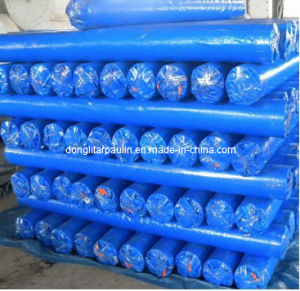 PE Tarpaulin Fabric in Rolls