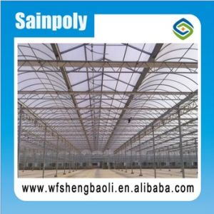 Fashionable Agriculture Greenhouse for Commercial Agriculture pictures & photos