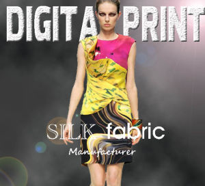 Digital Print Fabric (X1009) pictures & photos