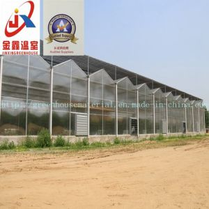 Multi Span Polycarbonate Sheet Greenhouse pictures & photos