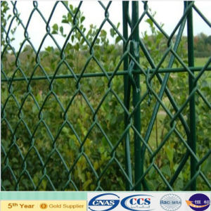 Green Color Coated Chain Mesh Fencing (XA-CLF13) pictures & photos