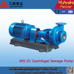 Wgf Horizontal Corrosive Resistant Sewage Pump