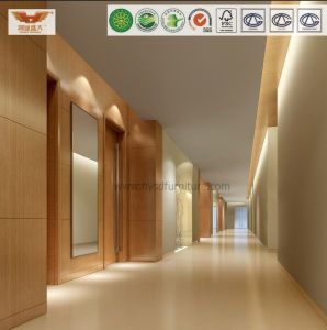 Corridor Wall for Modern 5 Star Hampton in Hospitality Hotel Furniture pictures & photos