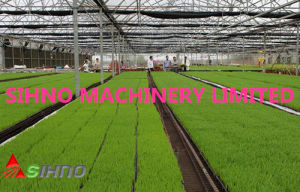 2bl-280A Type Seedling Planting Machine pictures & photos