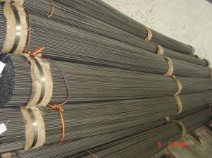 ERW Welded Steel Tube/Pipe