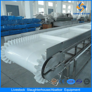 Floor Type Cattle Viscera Cutting and Conveyor pictures & photos