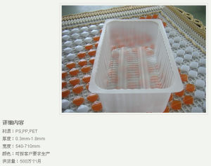 Attractive New Design Hot Sale Cheap Plastic Tray pictures & photos