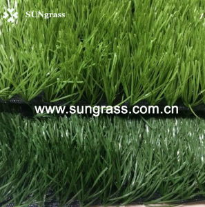 50mm Football/Soccer/Sports Artificial Grass (SUNJ-HY00010) pictures & photos