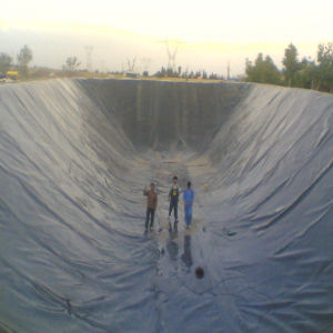 HDPE Black Geomembrane Film for Fish Pond Liner pictures & photos