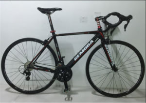 700c 22 Speed Alloy Frame Sports Bicycle, Racing Bike, Road Bike pictures & photos