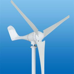 600W Small Wind Turbine Generator (SN-1000W) pictures & photos