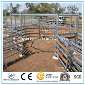 Galvanized Horse Panel/Horse Fence Panel pictures & photos