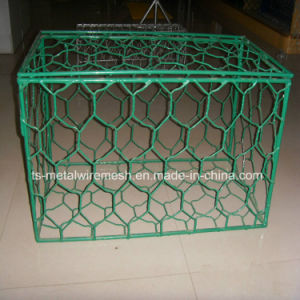 Gabion Box/Gabion Mesh/Hexagonal Wire Mesh pictures & photos