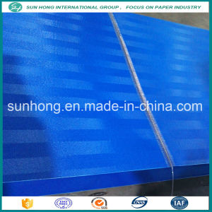 Factory 100% Polyester Fabric Sludge Dewatering Belt Fabric pictures & photos