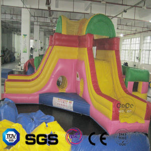 Coco Water Design Inflatable Maze Slide LG9075 pictures & photos