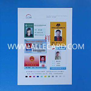 Laser Printable Card Sheet pictures & photos