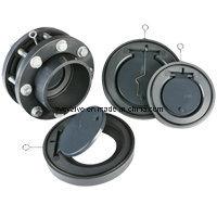 DIN ANSI JIS Standard PVC Check Valve pictures & photos