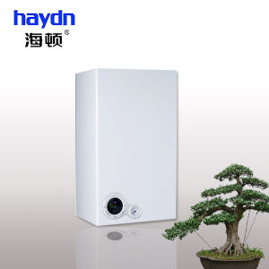 High Efficiencywall Hung Heating Boiler