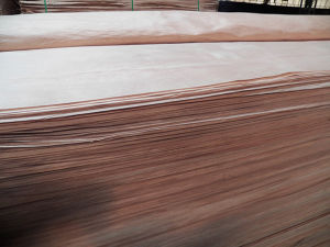 Engineered Wood Veneer /White Color Veneer with Best Price pictures & photos