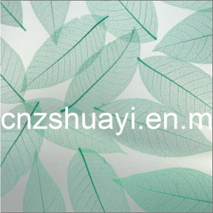 New Decoration Acrylic Resin Sheet (G-0905-B) pictures & photos