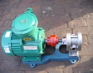 2cy4.2/2.5 Stainless Steel Gear Oil Pump pictures & photos