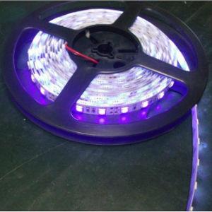 120PCS/M Purple Color LED Flexible Strip Light DC12V/24V pictures & photos