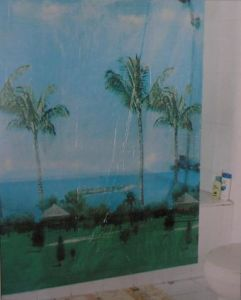 PEVA Shower Curtain - 4