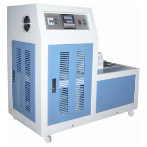 Low Temperature Chamber DWY-60A pictures & photos