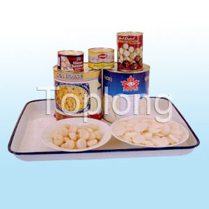 Canned Whole, Sliced & Diced Water Chestnuts