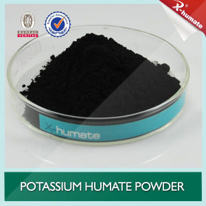 95% Super Potassium Humate X-Humate pictures & photos