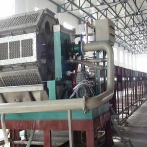Pulp Molding Egg Tray Machine