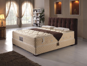 Latex Spring Mattress (AM1838)