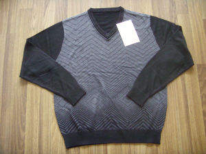 Men′s Sweater (1128)