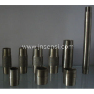 Stainless Steel Pipe Nipples pictures & photos