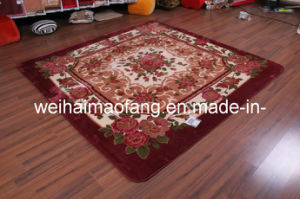 Raschel Mink Polyester Picnic Shaggy Carpet (NMQ-CPT016) pictures & photos