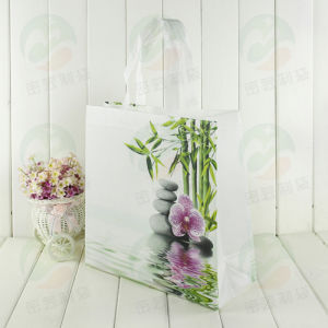 3D Nonwoven Bag with Customised Design Promitional Packing (MY-067) pictures & photos