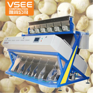 Vsee 5000+Pixels Lotus Seeds CCD Color Sorting pictures & photos