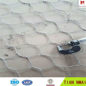 Gabion for Export High Quality pictures & photos
