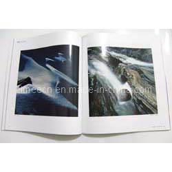 Magazine (A208)
