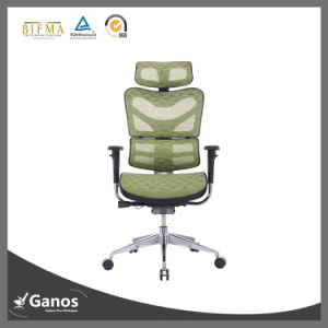Back Support Ergonomic Office Seating pictures & photos