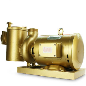 Swimming Pool Anti-Corrosion High Pressure Copper Water Pump pictures & photos