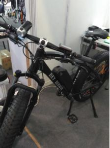 48V/11ah/350W Al Alloy Lithium Battery Electric Bicycle (BN2606) pictures & photos