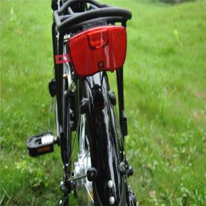 Cheap Small Folding E Bike pictures & photos