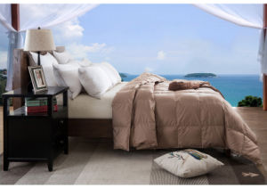 Five Color Dying Cotton Cover White Goose Down Quilts Comforter Duvet pictures & photos