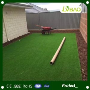Durable Landscaping Garden Artificial Grass/Turf/Lawn pictures & photos