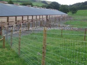Hot Sale Grassland Fence Machine pictures & photos