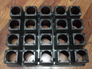 20 Cells PS Seed Tray Palstic Flower Pot Tray Plastic Packing Tray pictures & photos