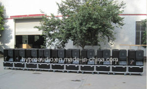PRO Audio Vt4888 Double 12inch Three Way Passive Line Array pictures & photos