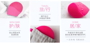 Electronic Facial Skin Cleansing Brush pictures & photos